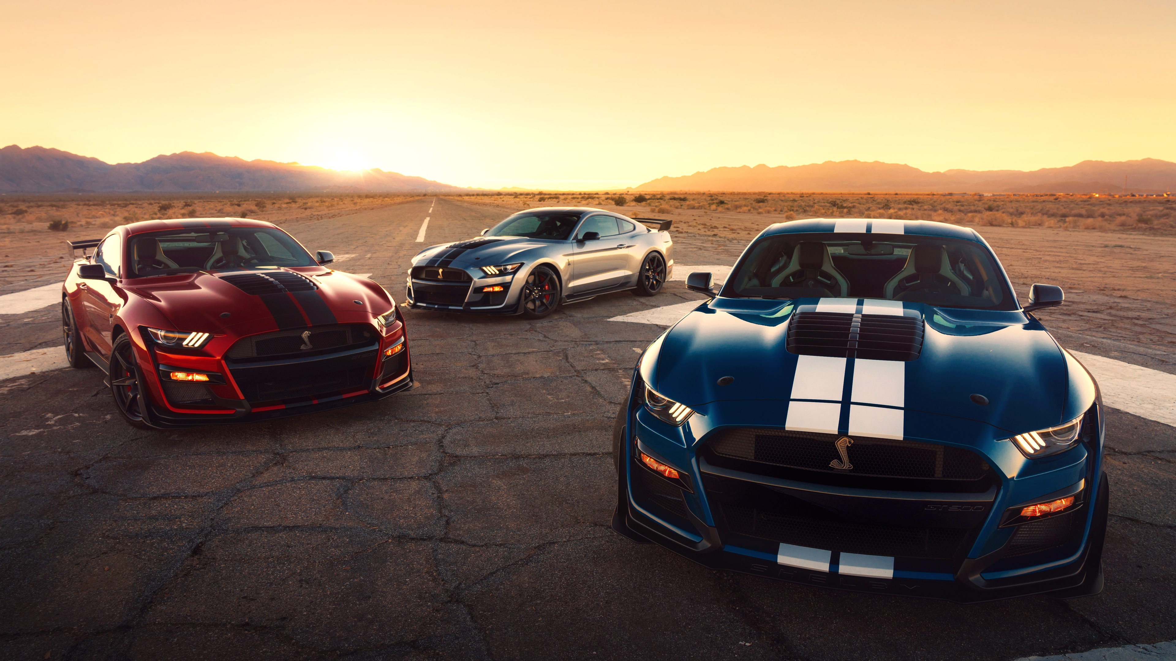 Wallpaper 4k Ford Mustang Shelby Gt500 2020 4k Wallpapers 5k Wallpapers 8k Wallpapers Cars Wallpapers Ford Mustang Wallpapers Hd Wallpapers Mustang Wallpapers