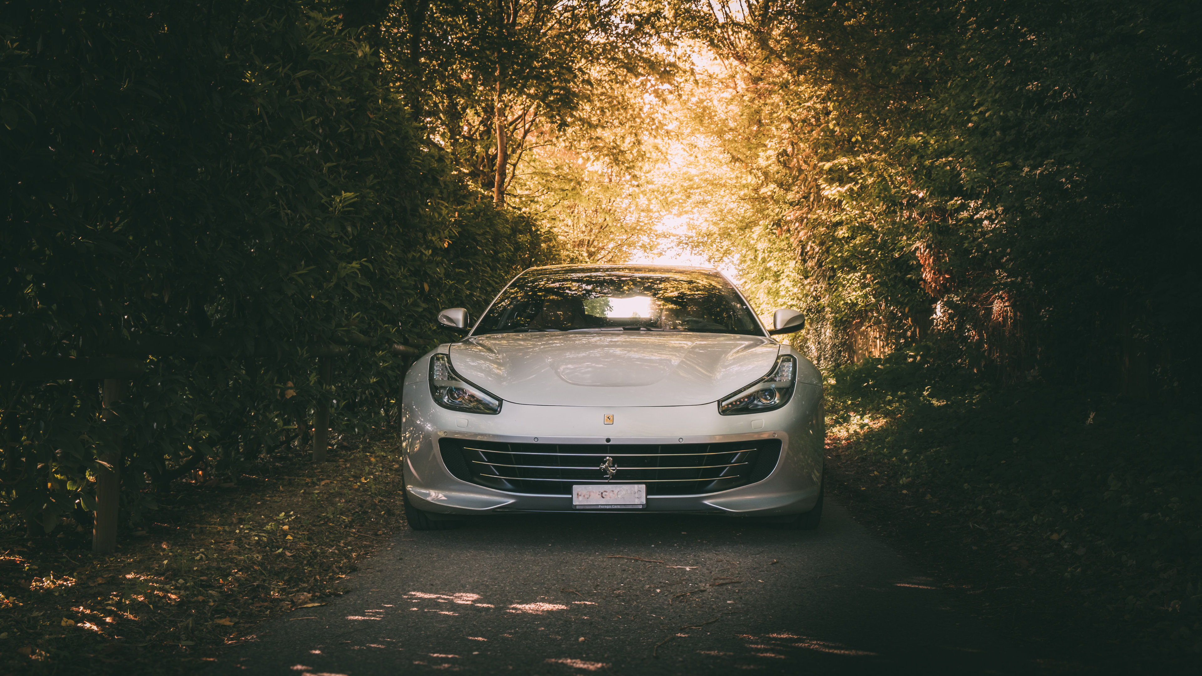 white ferrari 1562108062 - White Ferrari - hd-wallpapers, ferrari wallpapers, cars wallpapers, 5k wallpapers, 4k-wallpapers