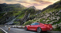 bmw m6 2019 1565054850 200x110 - Bmw M6 2019 - hd-wallpapers, cars wallpapers, bmw wallpapers, bmw m6 wallpapers, behance wallpapers, 4k-wallpapers