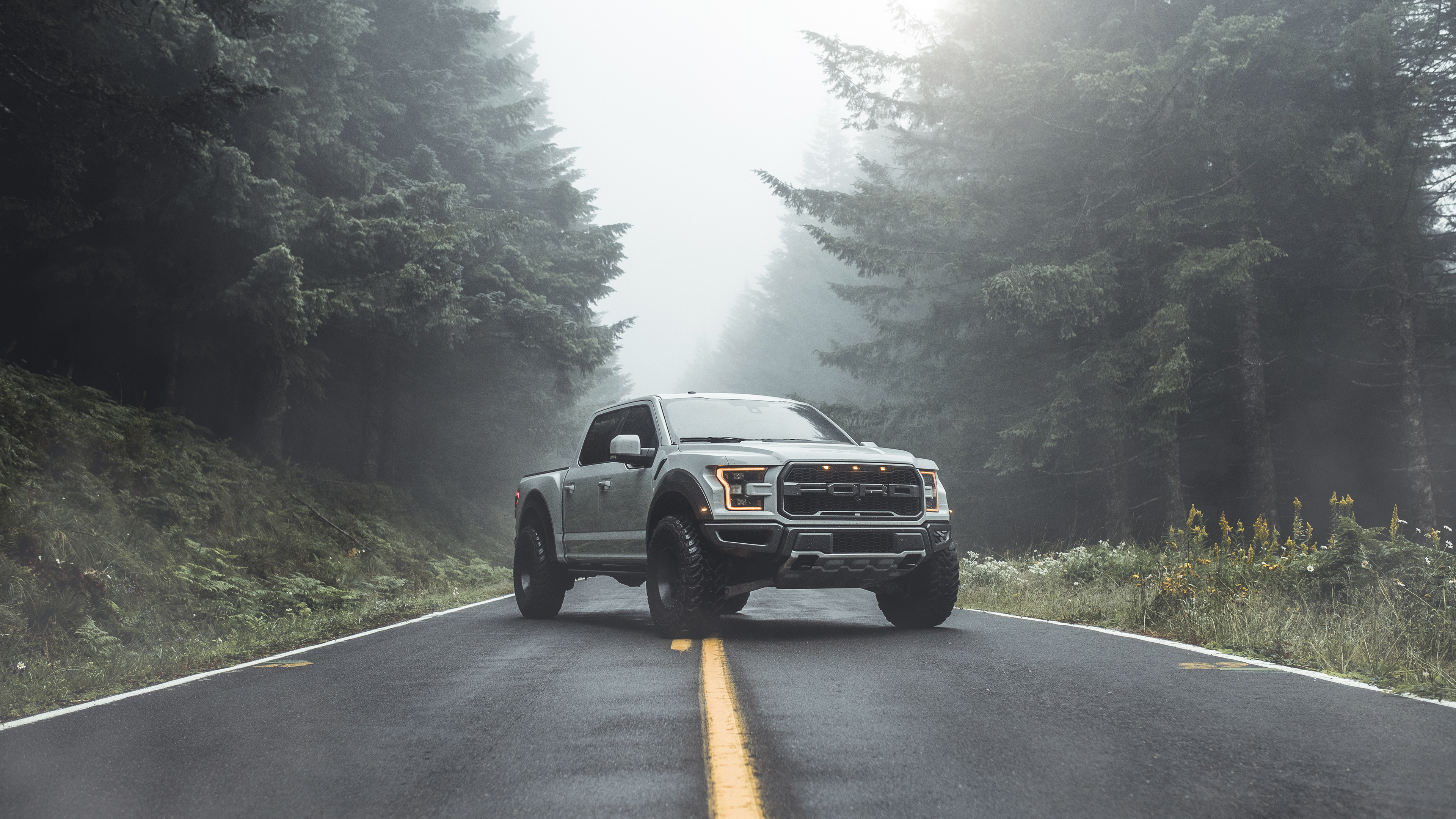 ford raptor 2019 1569189430 - Ford Raptor 2019 - truck wallpapers, hd-wallpapers, ford wallpapers, ford raptor wallpapers, ford ranger raptor wallpapers, cars wallpapers, behance wallpapers, 4k-wallpapers, 2019 cars wallpapers