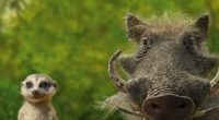 timon and pumbaa 1569187278 200x110 - Timon And Pumbaa - the lion king wallpapers, pumbaa wallpapers, movies wallpapers, hd-wallpapers, 5k wallpapers, 4k-wallpapers, 2019 movies wallpapers