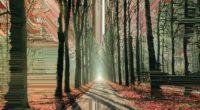artistic glitch trees road 1574938680 200x110 - Artistic Glitch Trees Road -