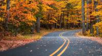 autumn drive road 1574938577 200x110 - Autumn Drive Road -