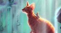 cat rider 1574940852 200x110 - Cat Rider -