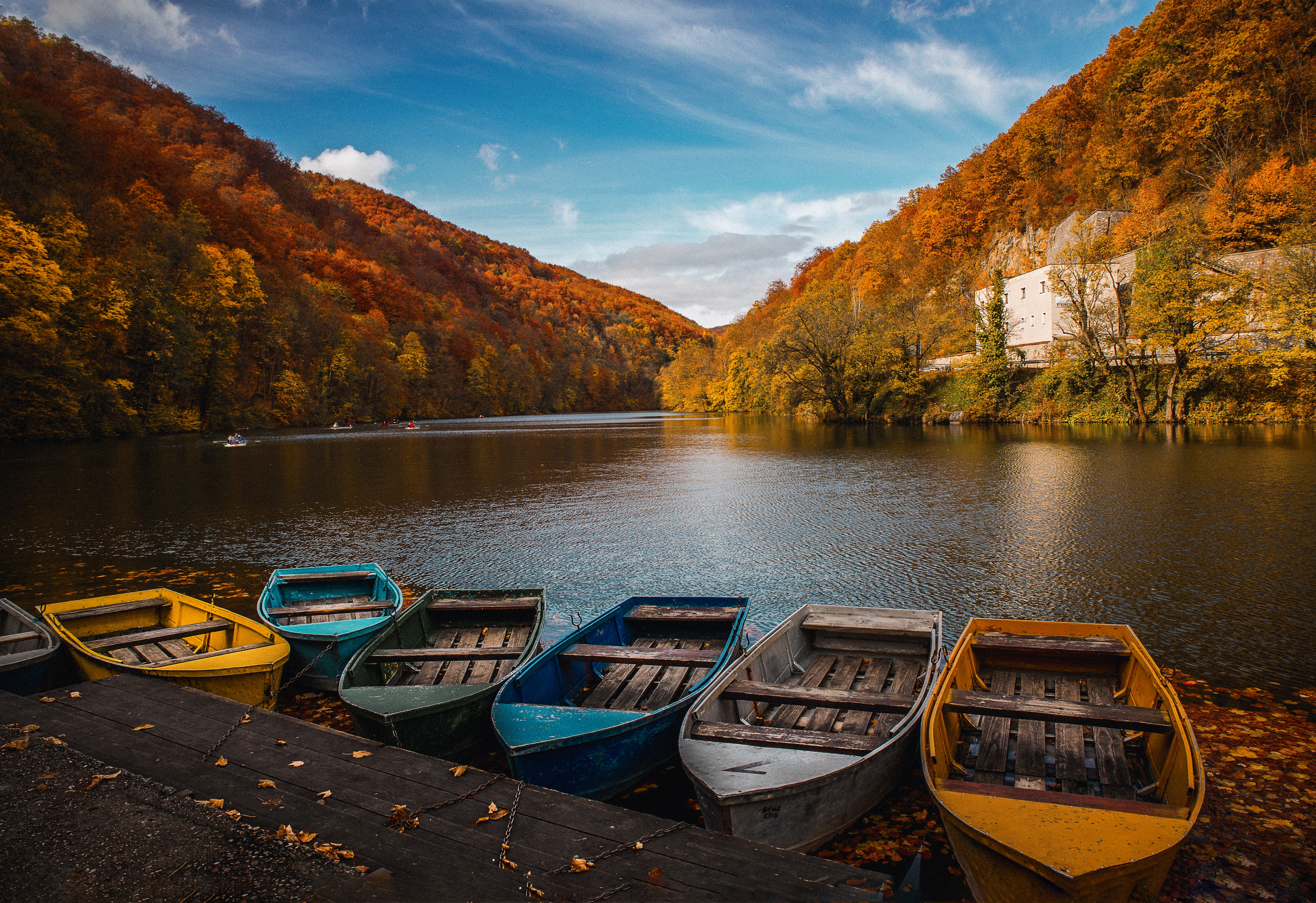 colored row boats 1574938564 - Colored Row Boats -