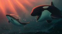 dolphin bubbles 1574938111 200x110 - Dolphin Bubbles -