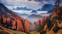 forest landscape clouds 1574937767 200x110 - Forest Landscape Clouds -