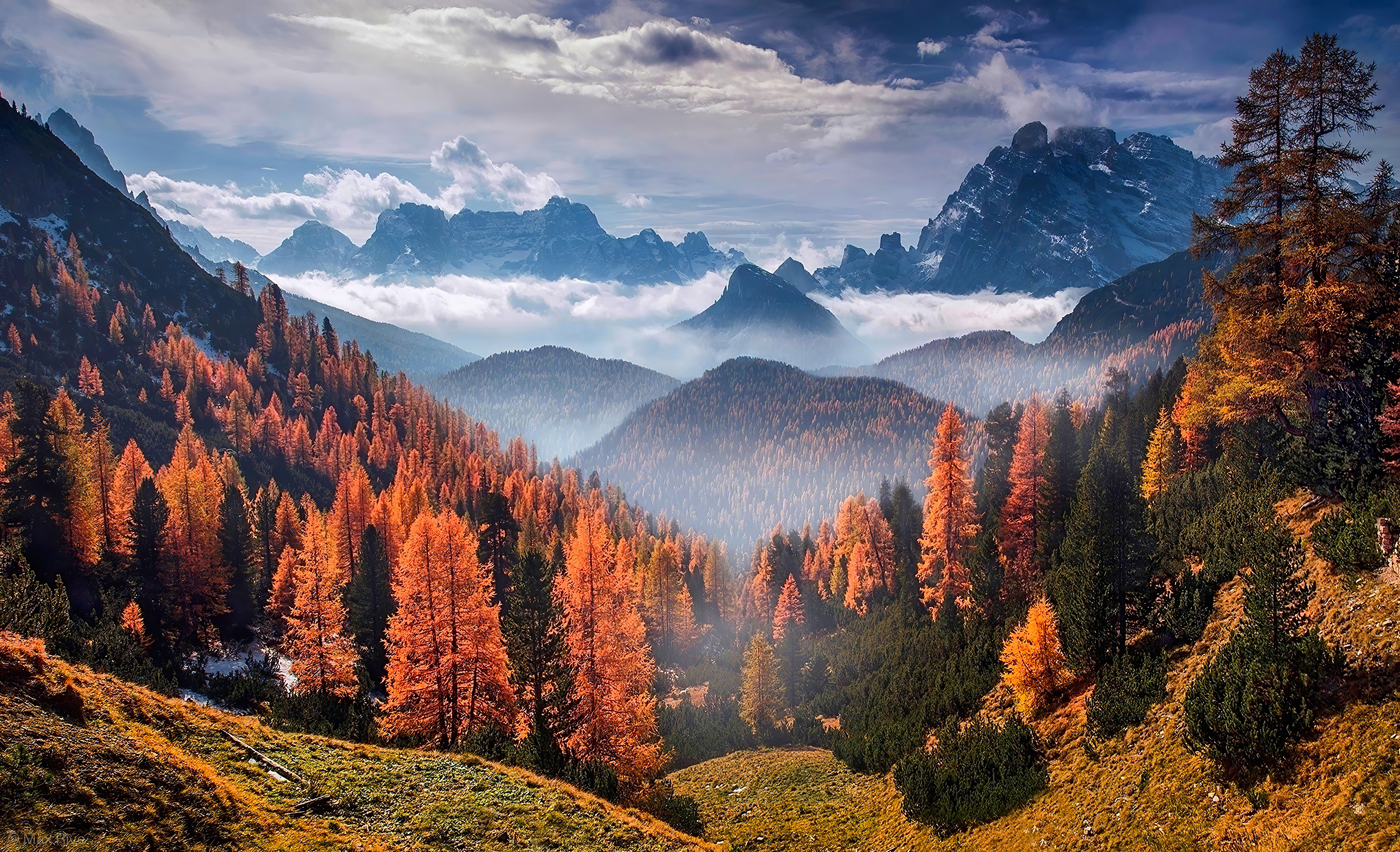 forest landscape clouds 1574937767 - Forest Landscape Clouds -
