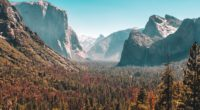 forest mountain yosemite valley 1574937455 200x110 - Forest Mountain Yosemite Valley -