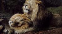 joyful lions 1574938087 200x110 - Joyful Lions -