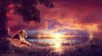 king enjoying the sunset 1574938090 200x110 - King Enjoying The Sunset -