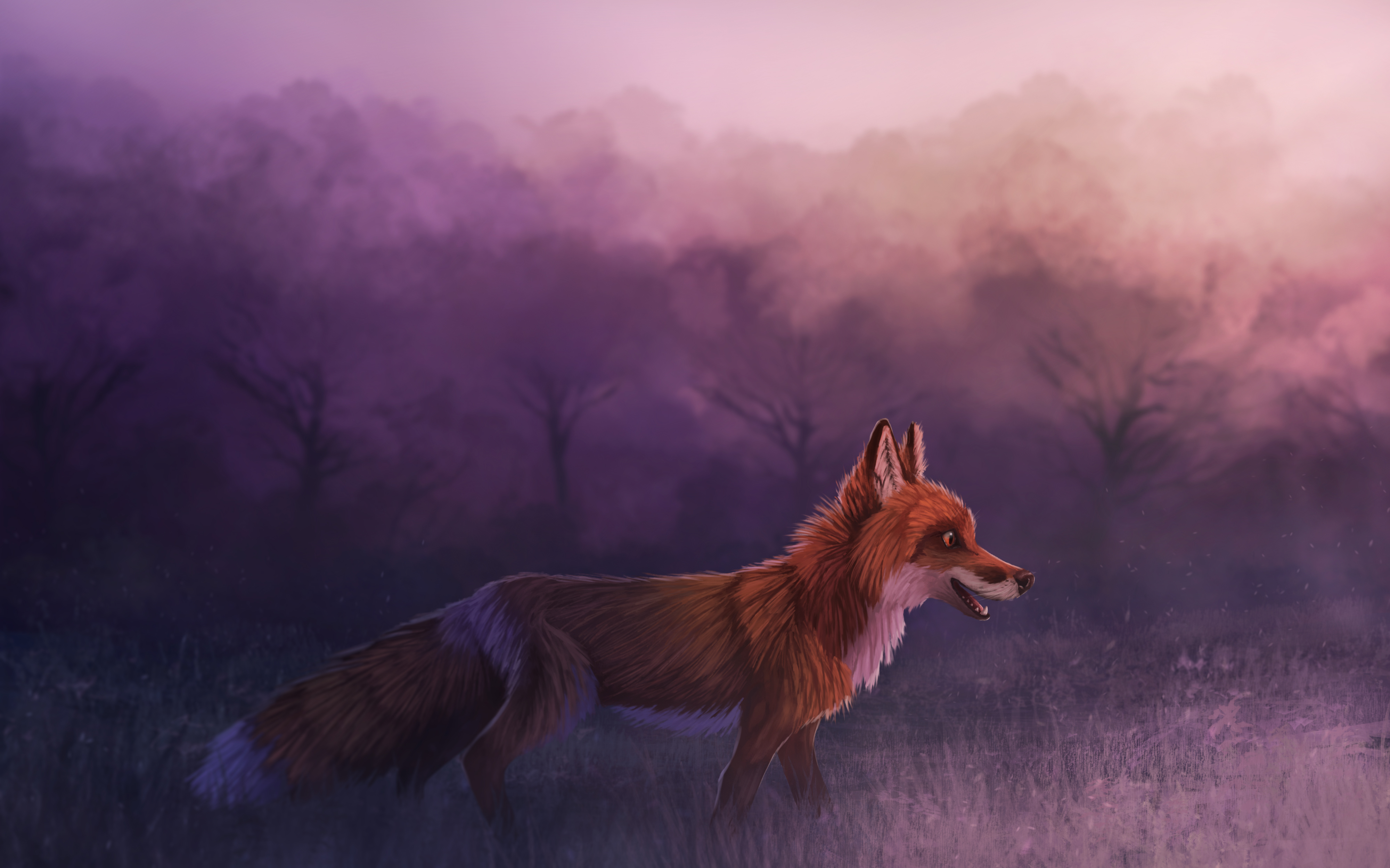 misty red fox 1574937969 - Misty Red Fox -