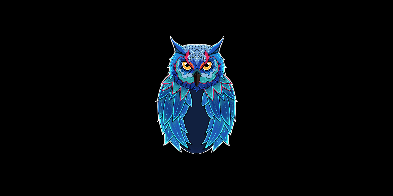 owl dark 1574938113 - Owl Dark -