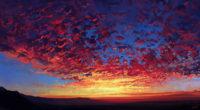 red sky autumn 1574941153 200x110 - Red Sky Autumn -