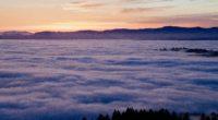 sea of clouds 1574937662 200x110 - Sea Of Clouds -