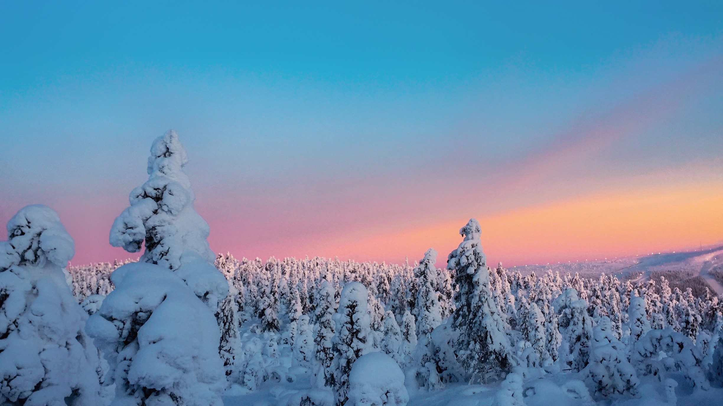 trees covered with snow view 1574939432 - Trees Covered With Snow View -