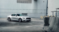 velgen silver mustang twin turbo 1572661149 200x110 - Velgen Silver Mustang Twin Turbo - mustang wallpapers, hd-wallpapers, ford mustang wallpapers, cars wallpapers, 8k wallpapers, 5k wallpapers, 4k-wallpapers, 2019 cars wallpapers, 10k wallpapers