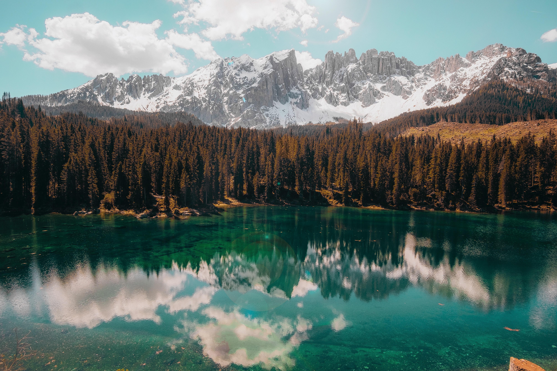 water body and trees 1574937659 - Water Body And Trees -
