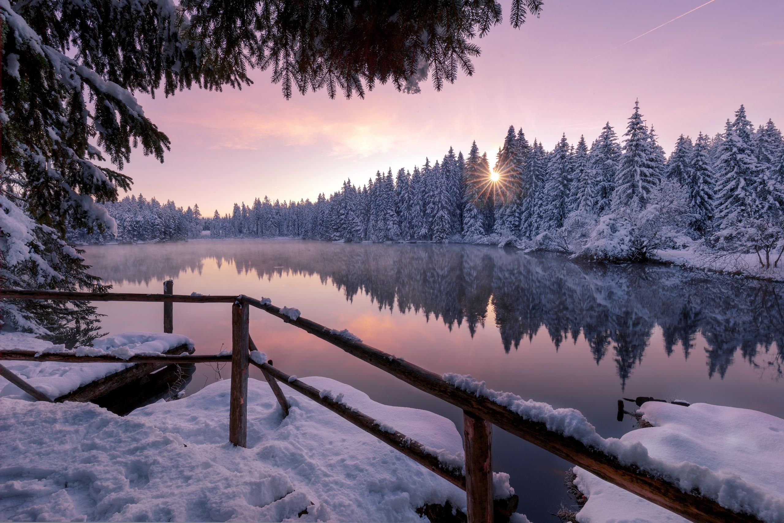 winter snow trees nature outdoors 1574939588 - Winter Snow Trees Nature Outdoors -