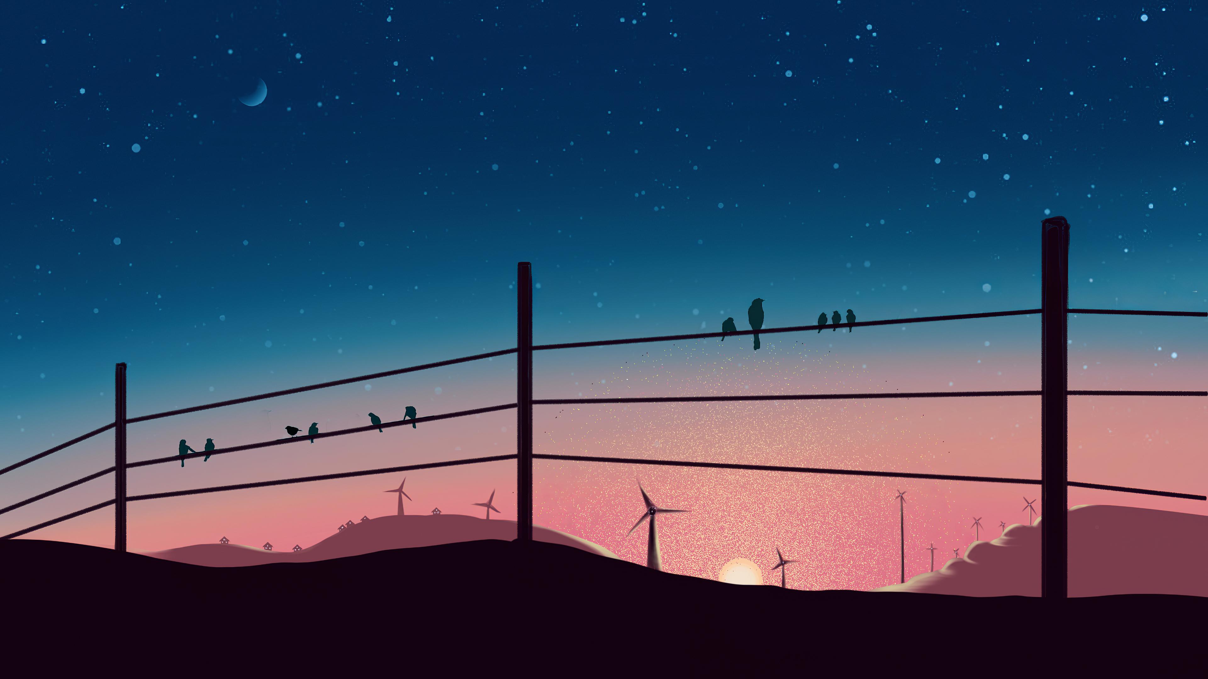 birds sitting on powerline 1575662979 - Birds Sitting On Powerline -