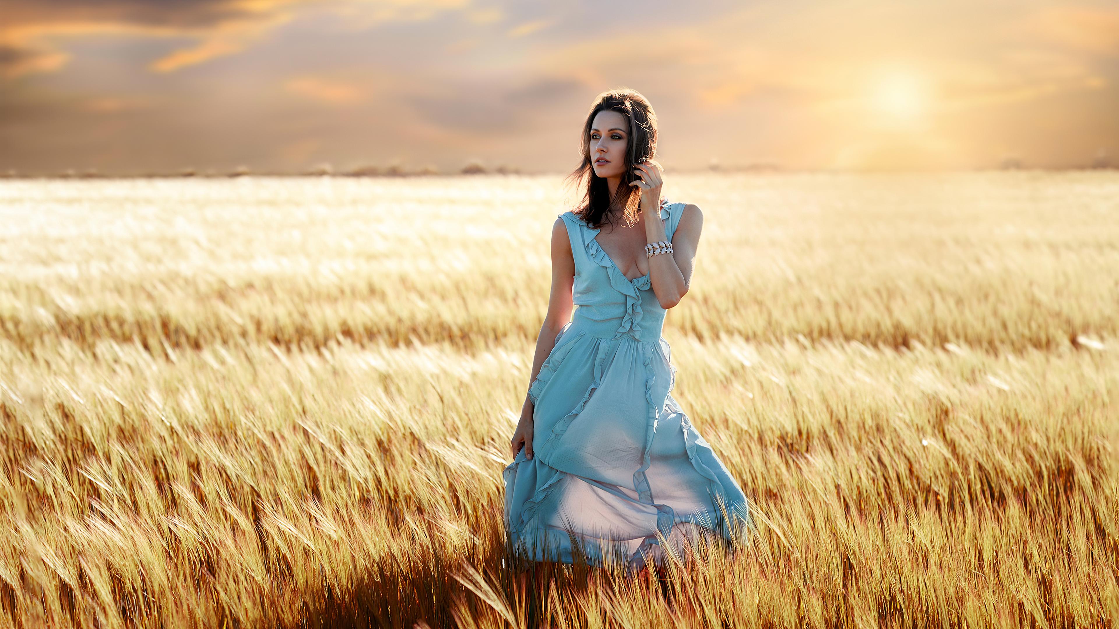 blue dress girl field summers 1575666038 - Blue Dress Girl Field Summers -