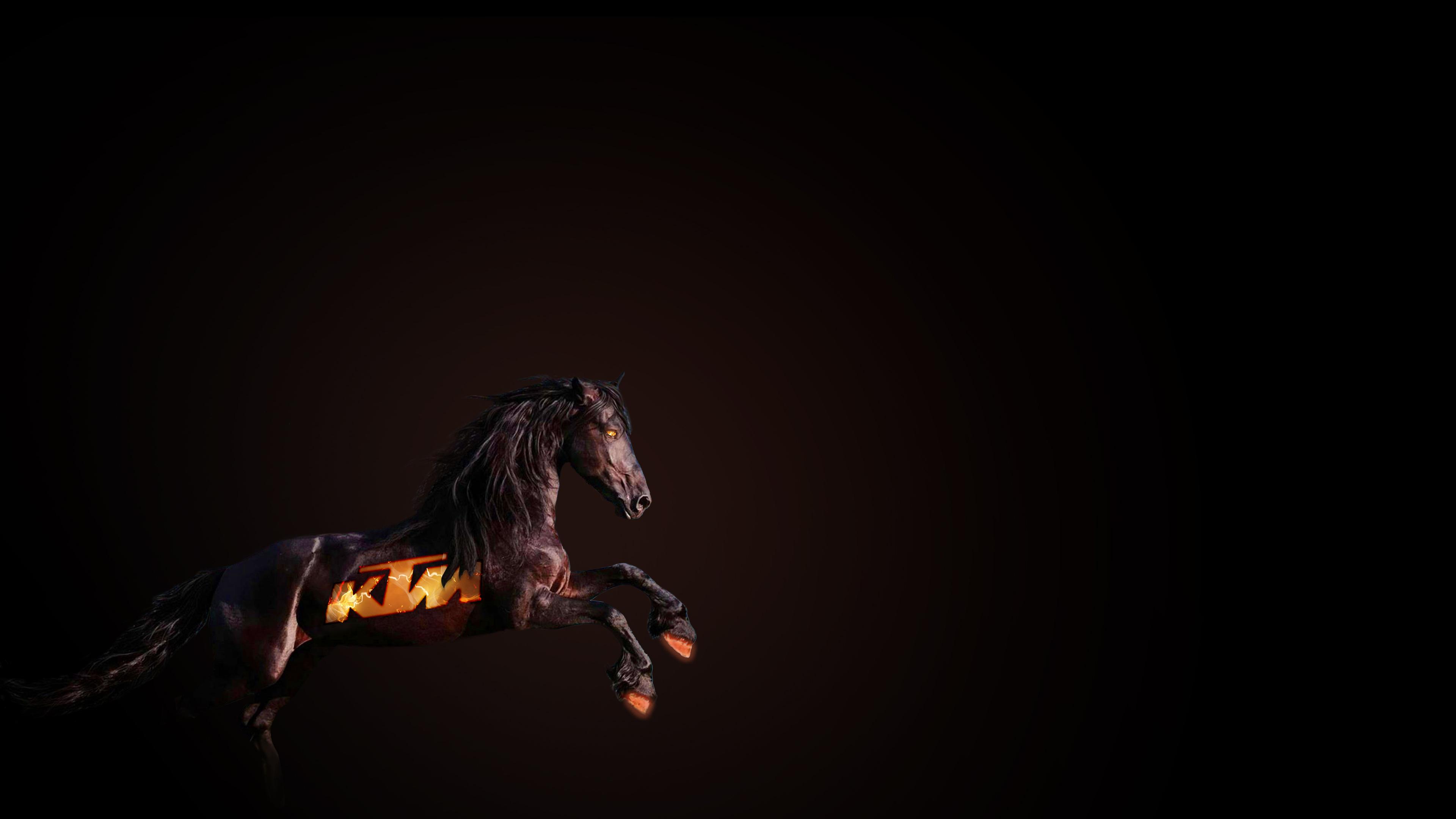 ktm horse 1575663229 - Ktm Horse -
