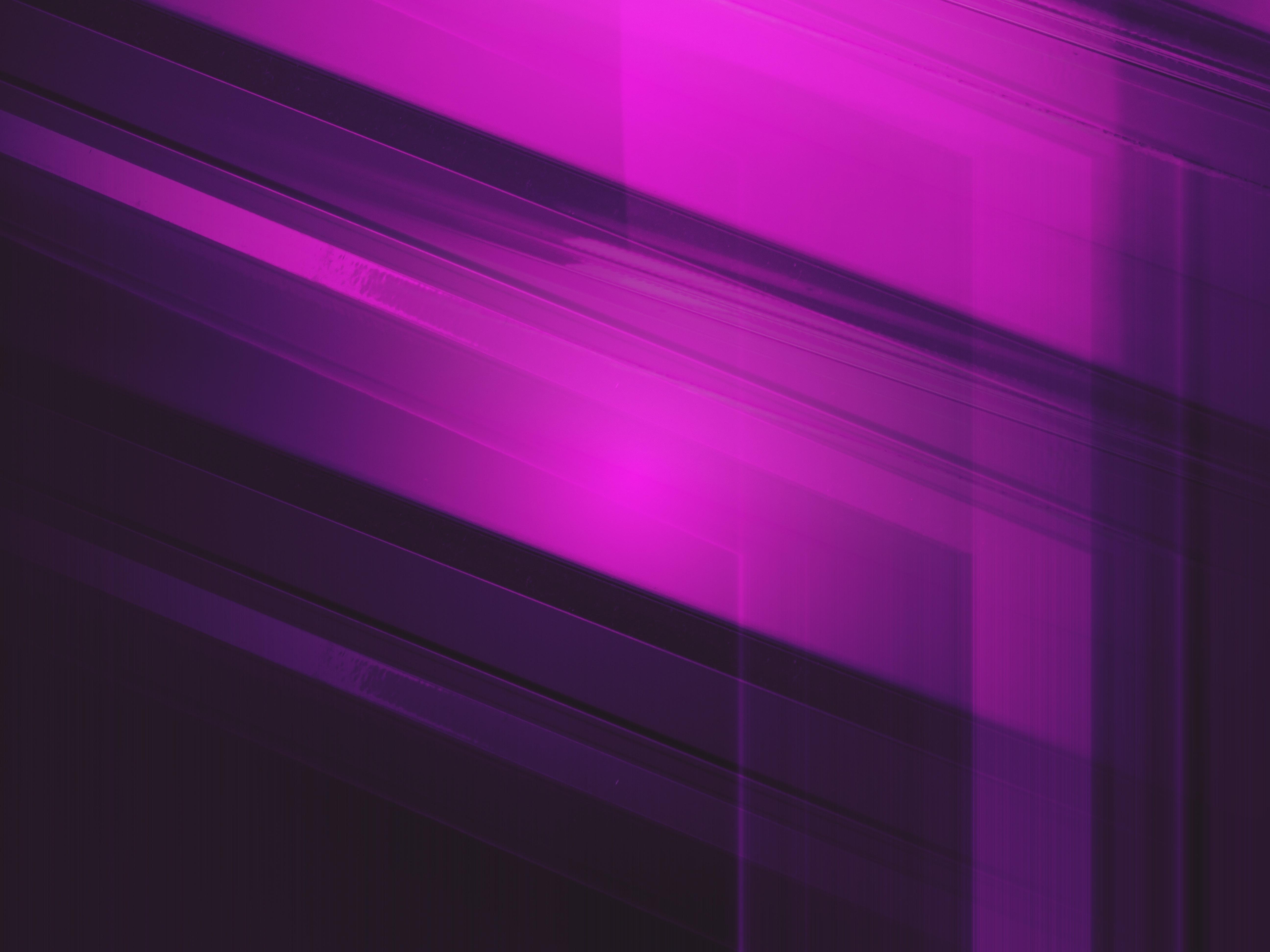 purple following lines 1575660125 - Purple Following Lines -