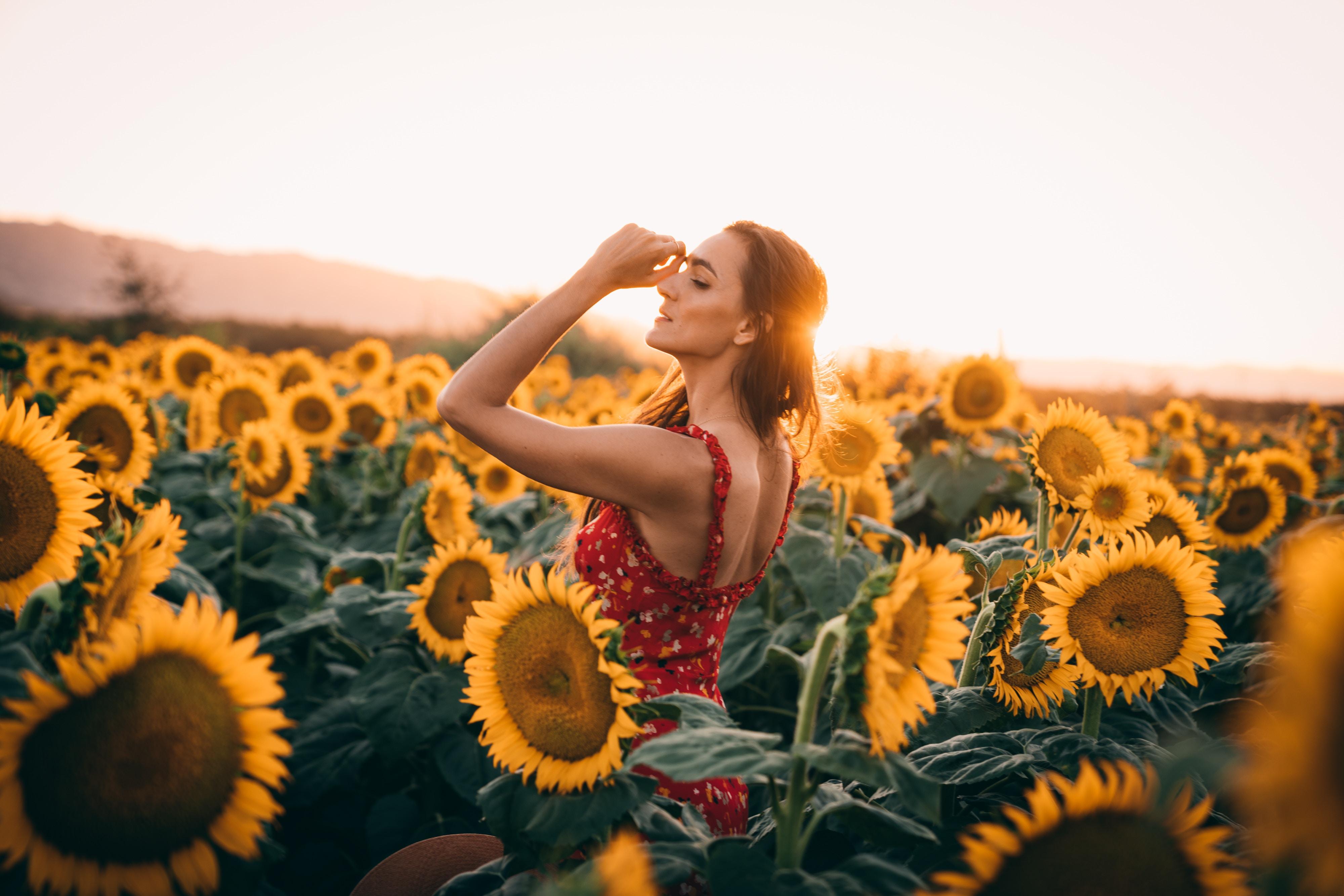 sunflowers field dress women 1575664983 - Sunflowers Field Dress Women -