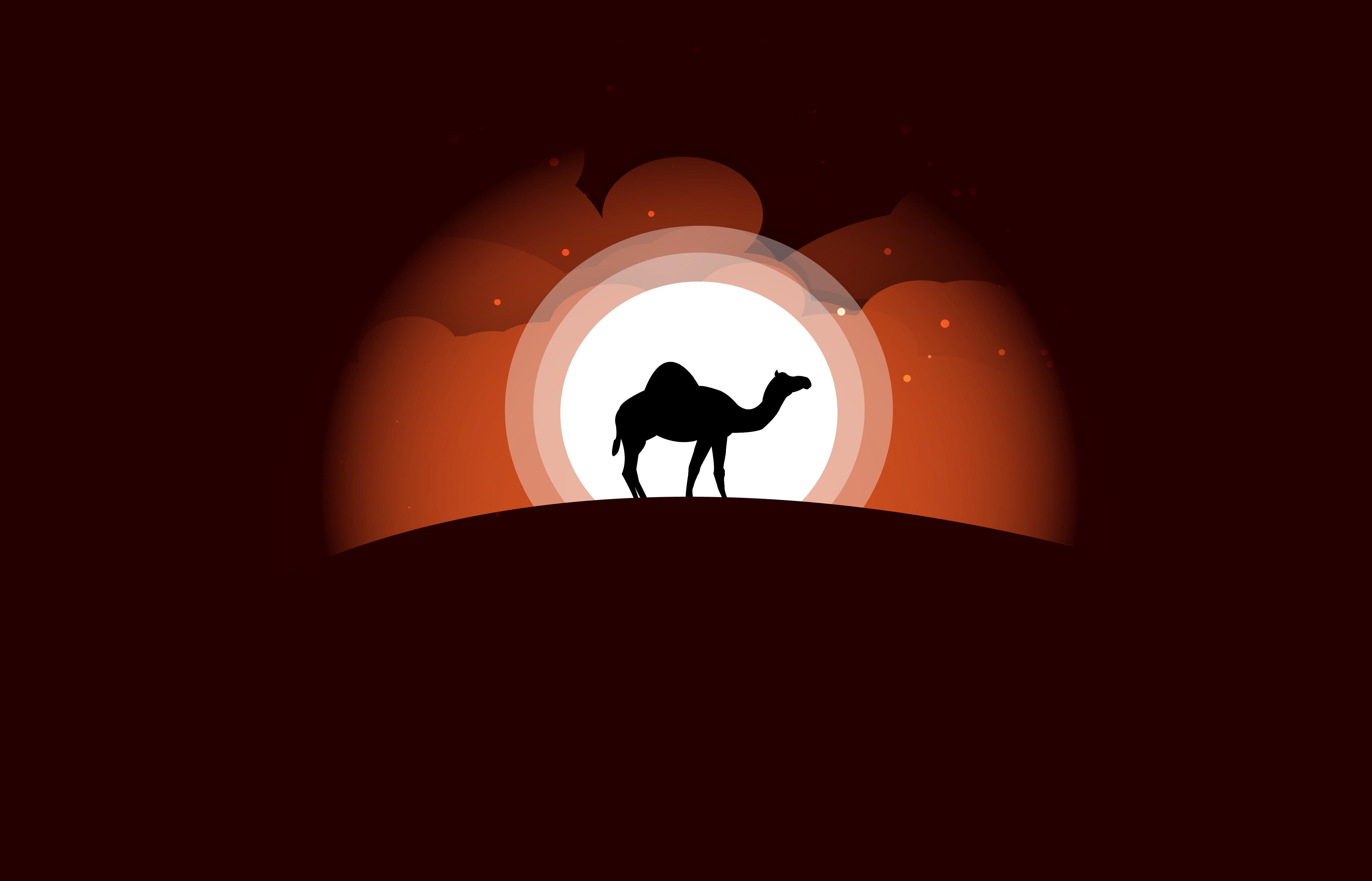 camel minimal art 1578254991 - Camel Minimal Art -