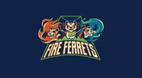 fire ferret 1580055092 200x110 - Fire Ferret -