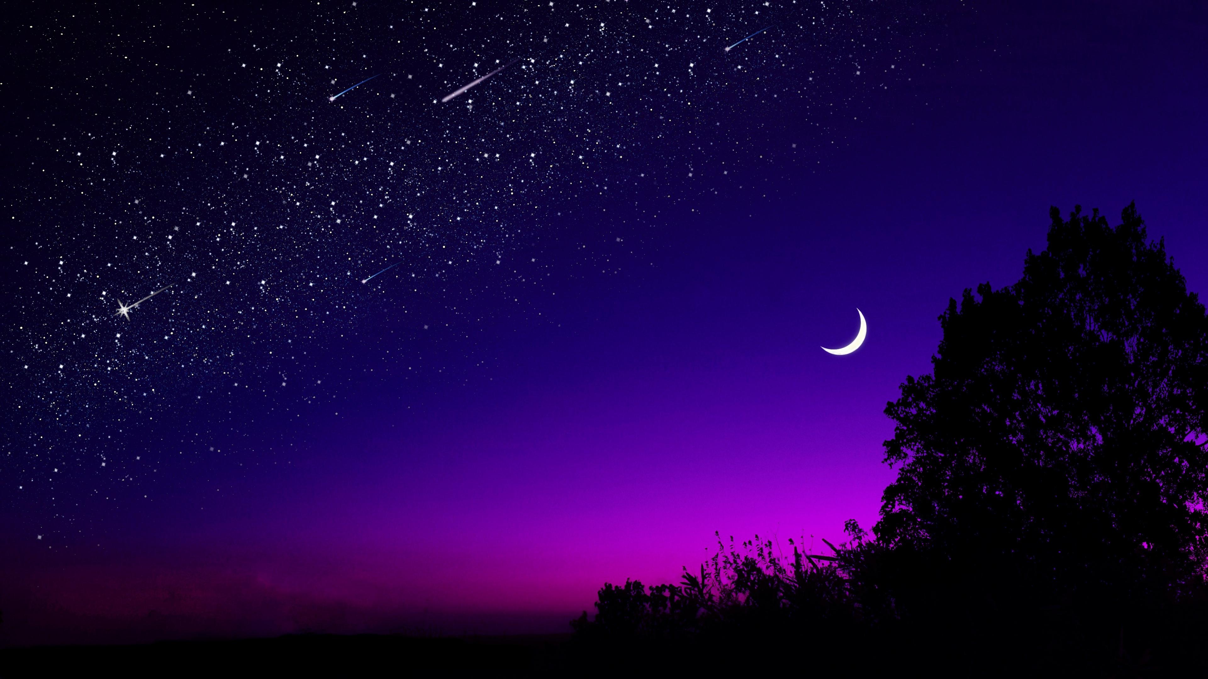 moon tree starry sky night stars dark 1579107209 - moon, tree, starry sky, night, stars, dark - tree, starry sky 4k wallpaper, Moon