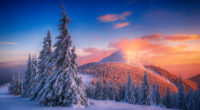 snowy pine trees 1579381140 200x110 - Snowy Pine Trees - Snowy Pine Trees wallpapers 4k, Snowy Pine Trees landscape wallpapers 4k, Snowy Pine Trees 4k wallpapers