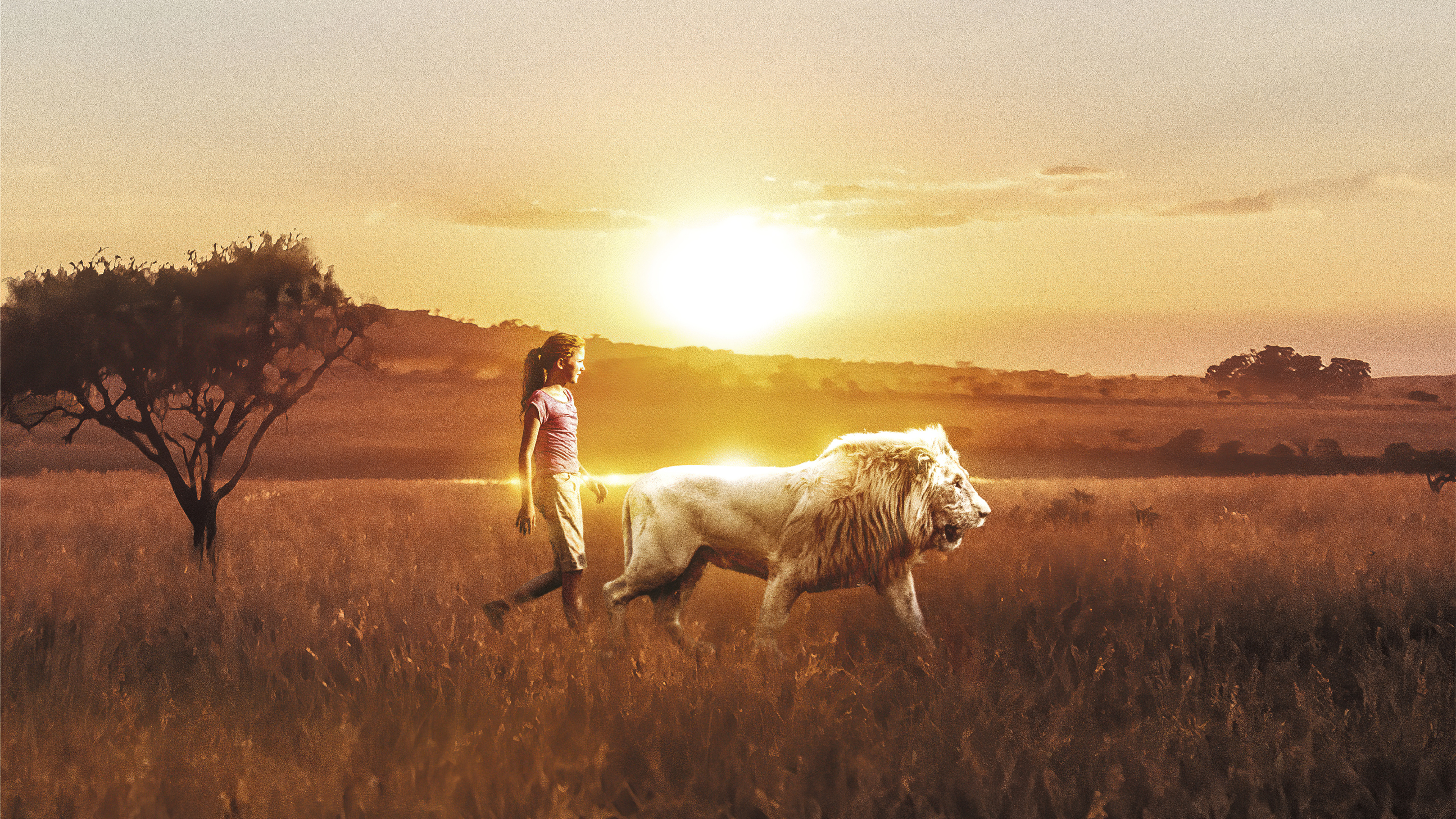 mia and the white lion 1589579136 - Mia And The White Lion - Mia And The White Lion wallpapers, Mia And The White Lion 4k wallpapers