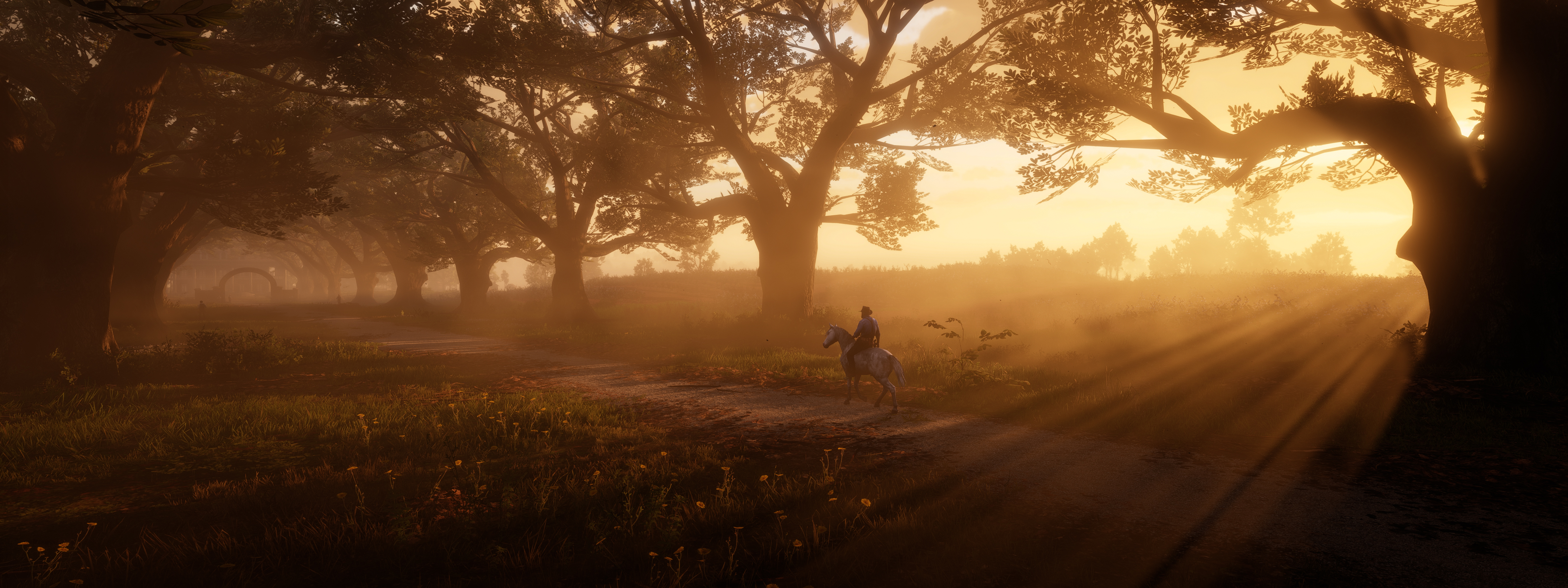 red dead redemption 2 the path 1589580815
