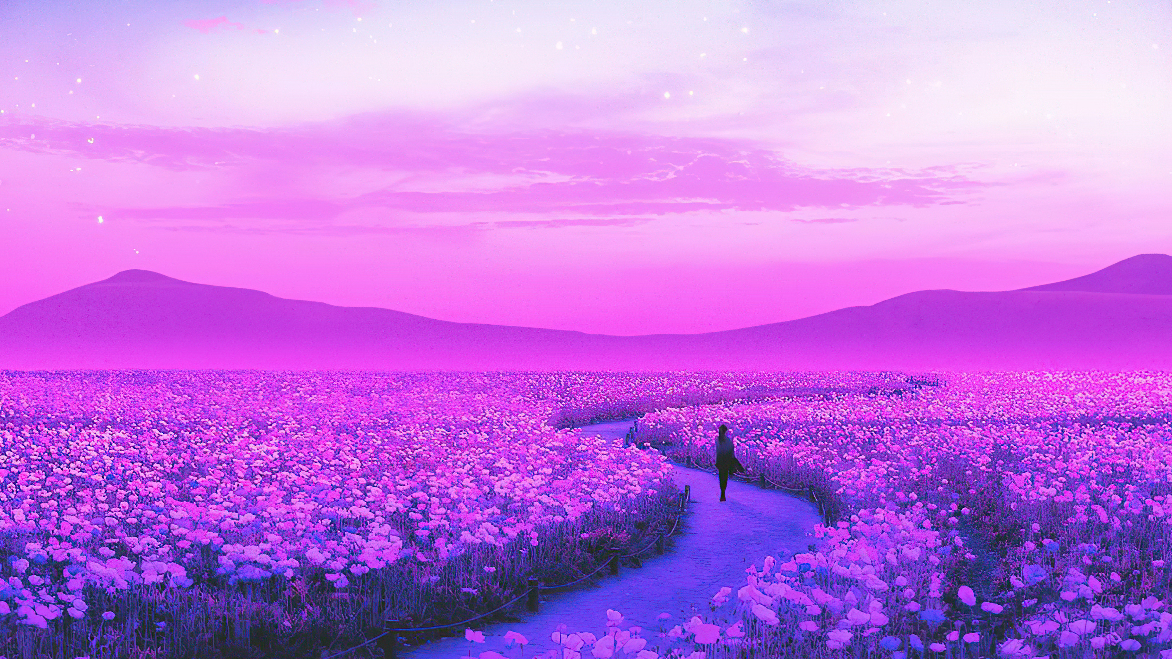 day dreaming lavender field 1596932265 - Day Dreaming Lavender Field -
