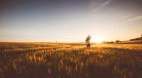 girl field sunrise and sunset horizon 4k 1596916190 200x110 - Girl Field Sunrise And Sunset Horizon 4k -