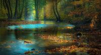 river sunbeam autumn 1596913276 200x110 - River Sunbeam Autumn -