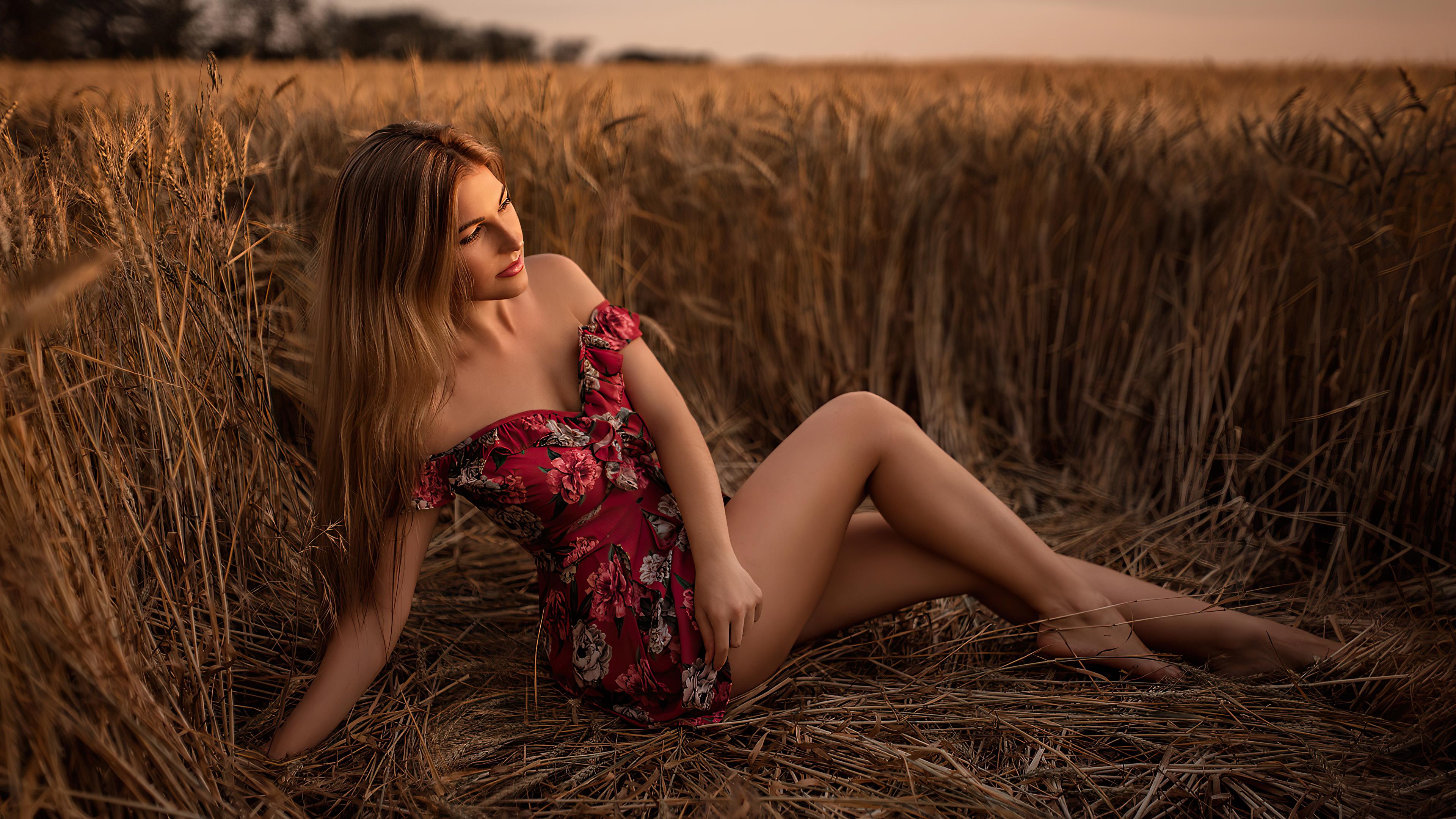 women long hair brunette sitting field 4k 1596916304 - Women Long Hair Brunette Sitting Field 4k -