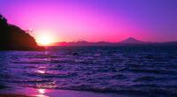 beautiful evening purple sunset 4k 1602533719 200x110 - Beautiful Evening Purple Sunset 4k - Beautiful Evening Purple Sunset 4k wallpapers