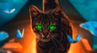cat magical walk 4k 1602359217 200x110 - Cat Magical Walk 4k - Cat Magical Walk 4k wallpapers