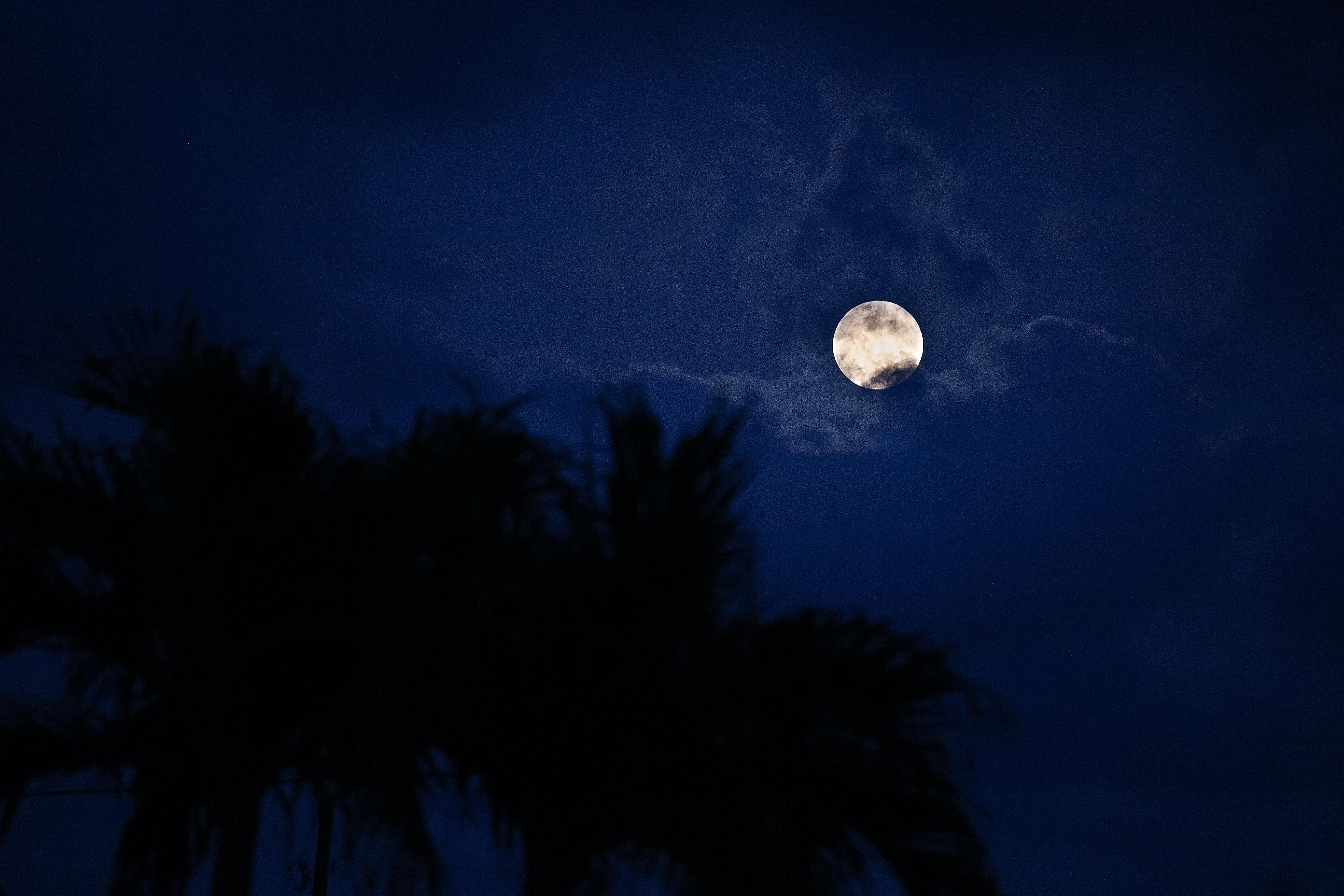 full moon night 4k 1602504898 - Full Moon Night 4k - Full Moon Night 4k wallpapers