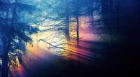 morning sunbeams forest 4k 1602504194 200x110 - Morning Sunbeams Forest 4k - Morning Sunbeams Forest 4k wallpapers