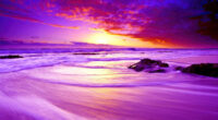 purple beach sunset 4k 1602504544 200x110 - Purple Beach Sunset 4k - Purple Beach Sunset 4k wallpapers