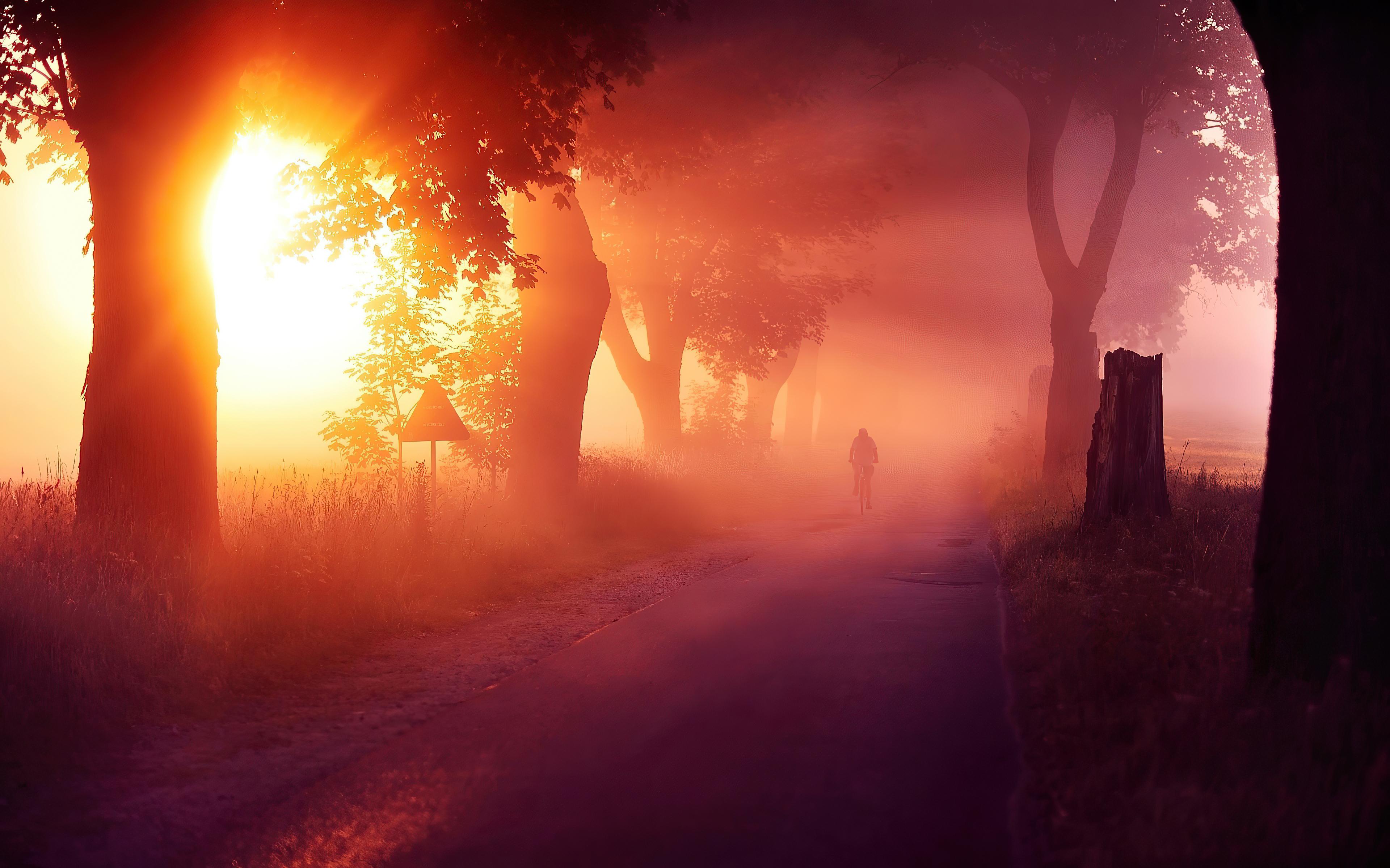 sun rays mist road 4k 1602504494 - Sun Rays Mist Road 4k - Sun Rays Mist Road 4k wallpapers
