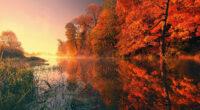 trees fall reflection autumn 4k 1602533868 200x110 - Trees Fall Reflection Autumn 4k - Trees Fall Reflection Autumn 4k wallpapers