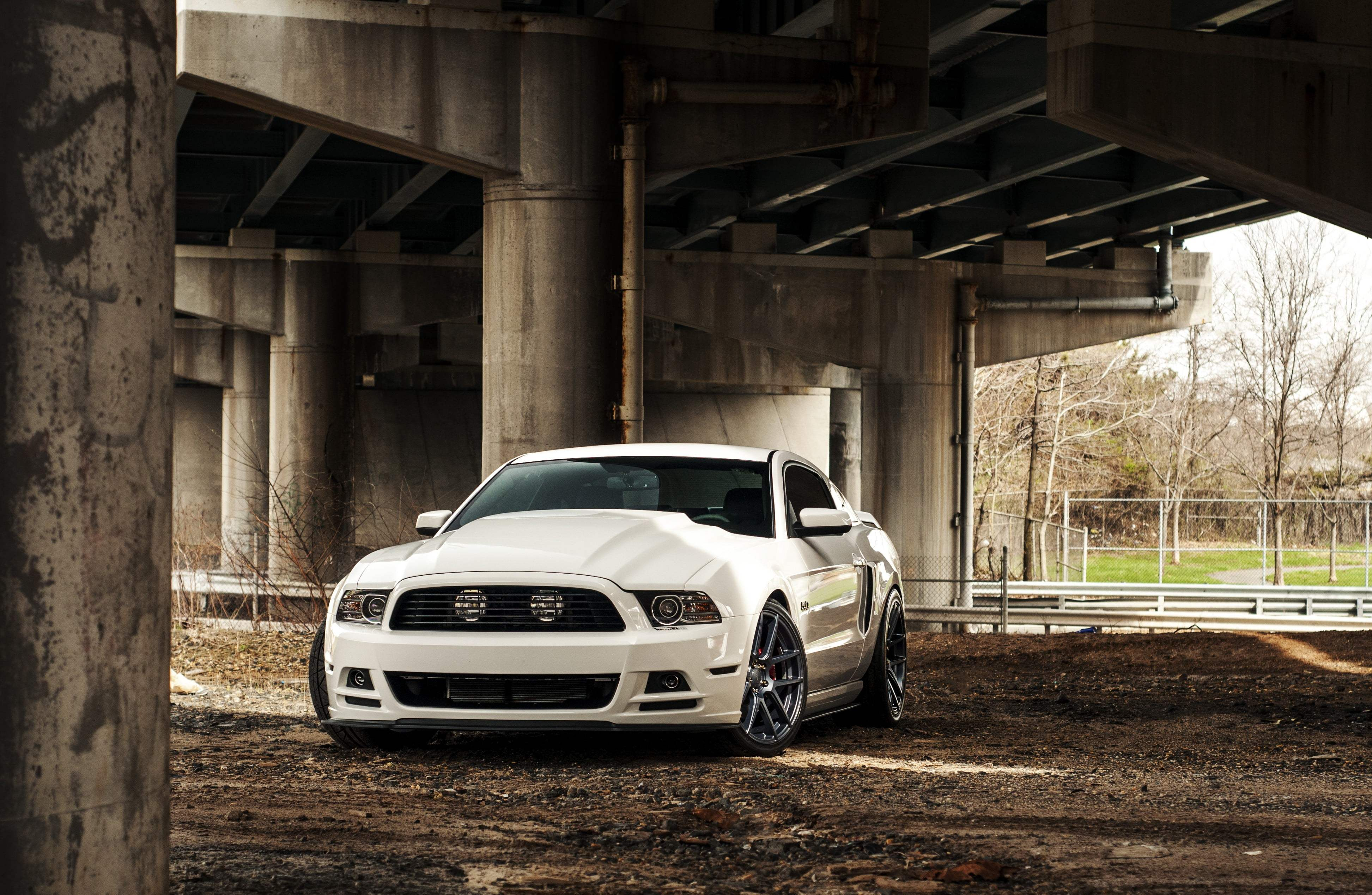 white ford mustang 4k 1602408459 - White Ford Mustang 4k - White Ford Mustang 4k wallpapers