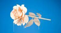 liquid rose 4k 1606508765 200x110 - Liquid Rose 4k - Liquid Rose 4k wallpapers