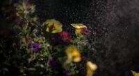 mist flowers 4k 1606508938 200x110 - Mist Flowers 4k - Mist Flowers 4k wallpapers
