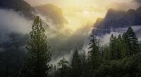yosemite national park beautiful view 4k 1606595561 200x110 - Yosemite National Park Beautiful View 4k - Yosemite National Park Beautiful View 4k wallpapers