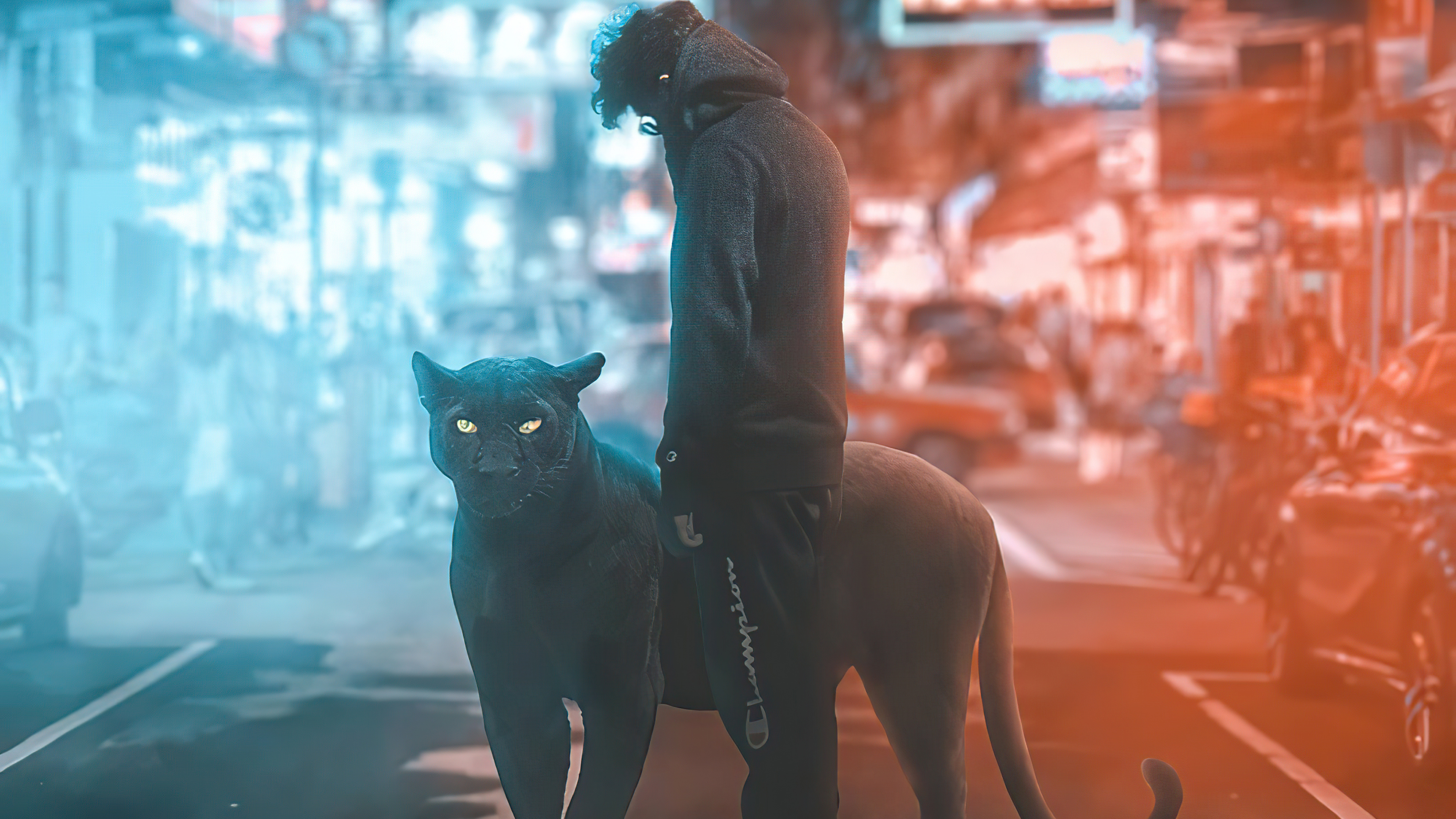 black panther and hoodie boy 4k 1608581273 - Black Panther And Hoodie Boy 4k - Black Panther And Hoodie Boy 4k wallpapers